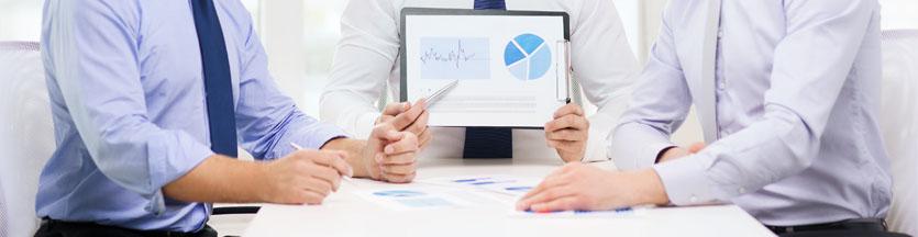 Cuáles son los servicios a las Asesorías y Profesionales